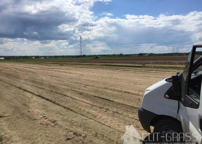 Доставка рулонного газона ЭлитГрасс