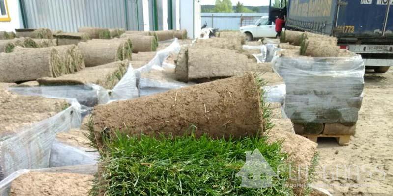Доставка рулонного газона Элит-Грасс
