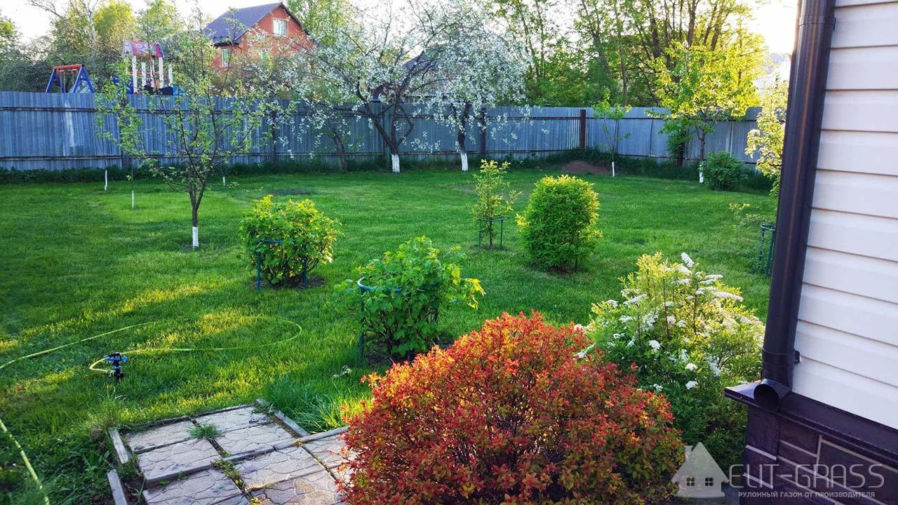 Построили дом - Выбираем газон !